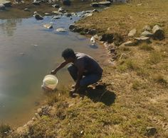 Rural poor sharing drinking water with animals in Eastern Cape municipality