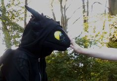 How To Tame Toothless by aThousandPaws