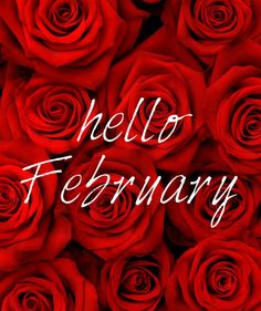 Hello February february february quotes hello february welcome february Seasons Months, Days And Months, Seasons Of The Year, Months In A Year, 12 Months, 1 Year, Hello February Quotes, Welcome February, Happy February