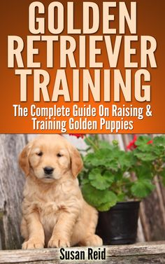 Golden Retriever Training: Breed Specific Puppy Training Techniques, Potty Training, Discipline, and Care Guide:Amazon:Kindle Store
