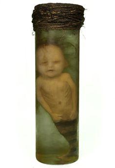 Catawiki pagina online de subastas Extraordinary mermaid fetus inside laboratory glass jar. 35-40cm approx.