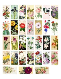 The Sum Of All Crafts: image collection - Domino Collage Sheets lots more here! And other free printables too!