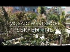 "Enjoy a tour of our 2 bedroom 2 bath ""Serpentine"" floor plan. Mosaic, Layout, Tours, Plants, Garden, Garten, Page Layout, Planters, Gardening"