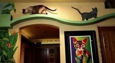 Resultado de imagem para arquitetura para gatos
