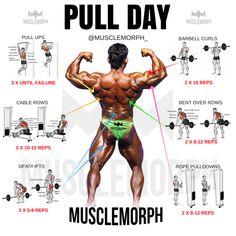 PULL DAY EXERCISE WORKOUT MUSCLEMORPH MUSCLEMORPHSUPPS.COM BODYBUILDING GYM