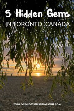 Looking for some off the beaten path destinations in Toronto, Canada? Born and raised in this vibrant, multicultural city, check out my picks for the 5 BEST hidden gems in Toronto! Quebec Montreal, Visit Canada, Canada Trip, Canada Eh, Scarborough Bluffs, Discover Canada, Canadian Travel, Travel Destinations, Travel Tips