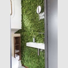 SnapWidget   Moss greenwall in ensuite of boat house.