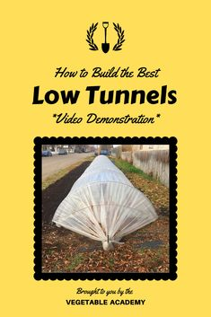 The free low tunnel tutorial in our online Classroom will show you all of the parts you need to build your own low tunnels, how to set them up, and how to adjust the air flow. These tunnels are lightweight, affordable, strong, adjustable, long lasting, easy to use, and portable. We have been using them to extend our growing season in our vegetable garden for several years. That helps us grow more food in less space! #lowtunnels #seasonextension #hoophouse #vegetablegarden #vegetableacademy Online Classroom, Vegetable Garden, Gardening Tips, Flow, Strong, Seasons, Vegetables, Space, Easy