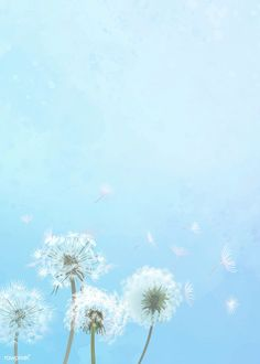 Download premium image of Hand drawn dandelions with a blue sky background about dandelion, dandelion seeds, spring, branch blossom flowers, and dandelion wallpaper 842073