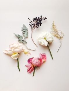 Spring palette of flowers