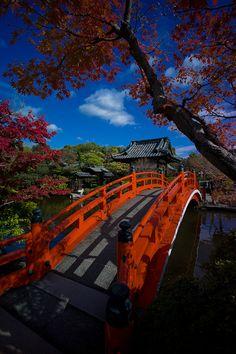 Fall in Kyoto #Japan