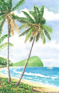 North Shore by Anne Miller, x watercolour print North Shore, Watercolor Print, Cactus Plants, Caribbean, Watercolours, Gallery, Boats, Painting, Sea