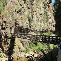 Karangahake Gorge, Waihi, New Zealand