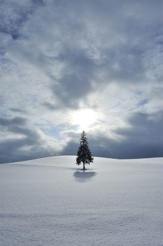 Hard Light on a Snow Hill by Yukio Miki  ~ Hokkaido, Japan