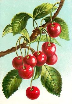 ягодки, оригинал