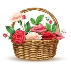 Roses Flowers Wicker Basket Realistic Image by macrovector Beautiful flowers basket arrangement full with fine fresh roses for special occasions realistic close-up image vector illustration Send Flowers Online, Fresh Flowers Online, Pink And White Background, White And Pink Roses, Romantic Flowers, Beautiful Flowers, Basket Drawing, Online Flower Delivery, Flower Basket
