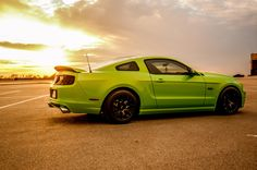 Gorgeous Gotta Have It Green 5.0 Showcased In The Sunset