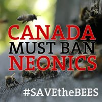 Join the 40,000 Canadians that have emailed our governments to BAN NEONIC PESTICIDES! #SavetheBees