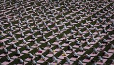 International Yoga Day – in pictures