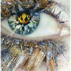 Sureal Ice - Stand alone image. Crystallized eyelashes and iris give an ordinary eye an extraordinary visual appeal.
