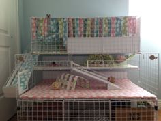 Buy The Right Size Guinea Pig Cage. Photo by maskarade Purchasing a guinea pig cage in a pet shop is unfortunately a good way to ensure that it is in fact too small for your pet's needs. Diy Guinea Pig Cage, Guinea Pig Hutch, Guinea Pig House, Pet Guinea Pigs, Guinea Pig Care, Pet Pigs, Hamsters, Guinie Pig, Pig Habitat