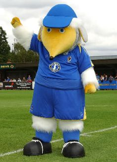 AFC Wimbledon - Haydon the Womble.