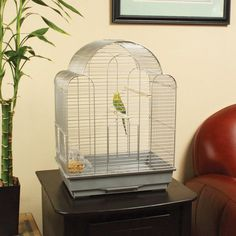 Really like this cage - by far my favourite. Too bad they won't ship. Like the round top and that it looks roomy.
