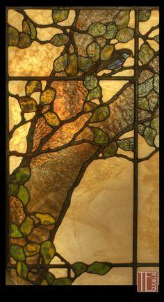 Black Bird in Oak Tree - stained glass window - Theodore Ellison Designs