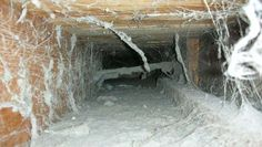 Improve the air quality and reduce allergens with our duct cleaning service.