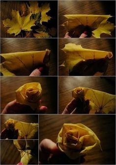 Rose with leaves #diy #rose #list