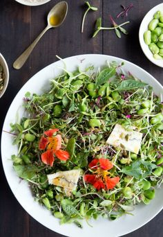 Microgreens May Be Your Kitchen's New Best Friend - http://blacklemag.com/living/microgreens-may-be-your-kitchens-new-best-friend/