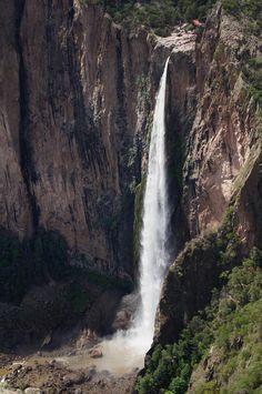 La cascada de Basaseachi es un salto de agua localizado en el estado de Chihuahua, México, con una altura de 246 metros de caída libre, es la cascada permanente más alta de México.