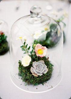 floral arrangement beneath Cloche with moss   Jenhuangphoto.com   poppiesandposies.com   natural wedding decor