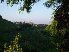 Village of Vinchio d'Asti