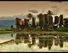 Tongkonan houses in Tana Toraja region, South Sulawesi, Indonesia