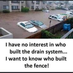 Political Humor And Memes -Trump: call them to build my wall! Funny Dog Memes, Fb Memes, Hilarious Texts, Funny Gifs, Best Funny Pictures, Funny Images, All The Things Meme, Funny Things, Doja Cat