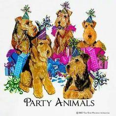 PartyDales