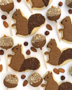 Squirrel Cookies and Cake Pops by Jenny Cookies for a Fall themed party| Darcy Miller Designs #squirrel #squirrelcookies #cakepops #chocolatecookies #decoratedsugarcookie #sugarcookie #frostedcookie #chocolatecakepops #fallparty #falltable #tabledecor #placesetting