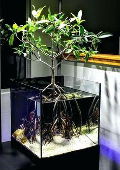45 Stunning Aquarium Design Ideas for Indoor Decorations - Page 16 of 45 - SooPush - aquascaping Aquarium Design, Home Aquarium, Reef Aquarium, Saltwater Aquarium, Aquarium Fish Tank, Freshwater Aquarium, Saltwater Tank, Mini Aquarium, Aquarium Stand