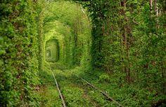 Tunnel of Love – Old train tunnel in Kleven, Ukraine