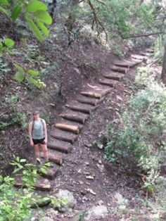 This new trail is one of the more challenging and fun hikes in the Austin area.  Be ready for a stair master workout and lots of elevation gain.