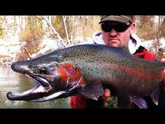 Great Lakes steelhead float fishing in west Michigan. Using centerpin gear, most of our action came on spawn bags, and a few on jigs. Enjoy the show! Best Fishing, Fishing Tips, Fishing Videos, Take The First Step, Great Lakes, Michigan, Action, Spawn, Sports