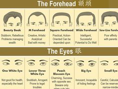 「Face Reading in Chinese Medicine」的圖片搜尋結果 Gesicht Mapping, Doterra Acne, Chinese Face Reading, Reading Body Language, How To Read People, How To Read Palms, Face Mapping, Palmistry, Psychology Facts
