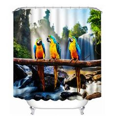 Three Parrots Standing on One Branch Print Bathroom Shower Curtain Cool Shower Curtains, Bathroom Shower Curtains, Bathroom Sets, Shower Tub, Shower Heads, Parrot Stand, Shower Accessories, Curtains For Sale, Amazing Bathrooms