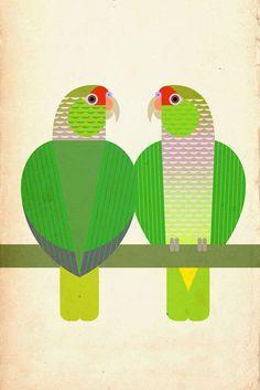 Scott Partridge - Illustration - Vinaceous-Breasted Amazon