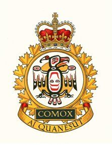 Royal Canadian Navy, Afghanistan War, Badges, Flags, Air Force, Patches, Canada, Military, Name Badges