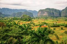 Valle de Viñales - A spectacular natural landscape, worth the trip just for its towering mogotes (rocky outcrops), this lush agricultural region reveals a slice of everyday life in rustic Cuba Cuba Vinales, Free Vacations, Cuba Travel, Travel Photos, Travel Ideas, Island Girl, Places Of Interest, View Photos, Places To See