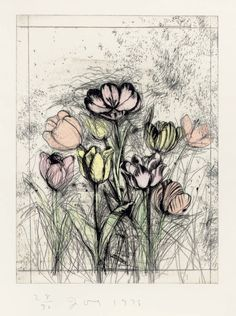 Jim Dine - A Temple of Flora (D'Oench & Feinberg etching with drypoint and hand-colouring Jim Dine, Drypoint Etching, Still Life Artists, Etching Prints, 6th Grade Art, Still Life Drawing, Valentines Art, Plant Drawing, Print Artist