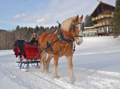 Sleigh ride with wine! I know a place we could try this