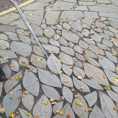 Natural and Unique Leaf Pavers....